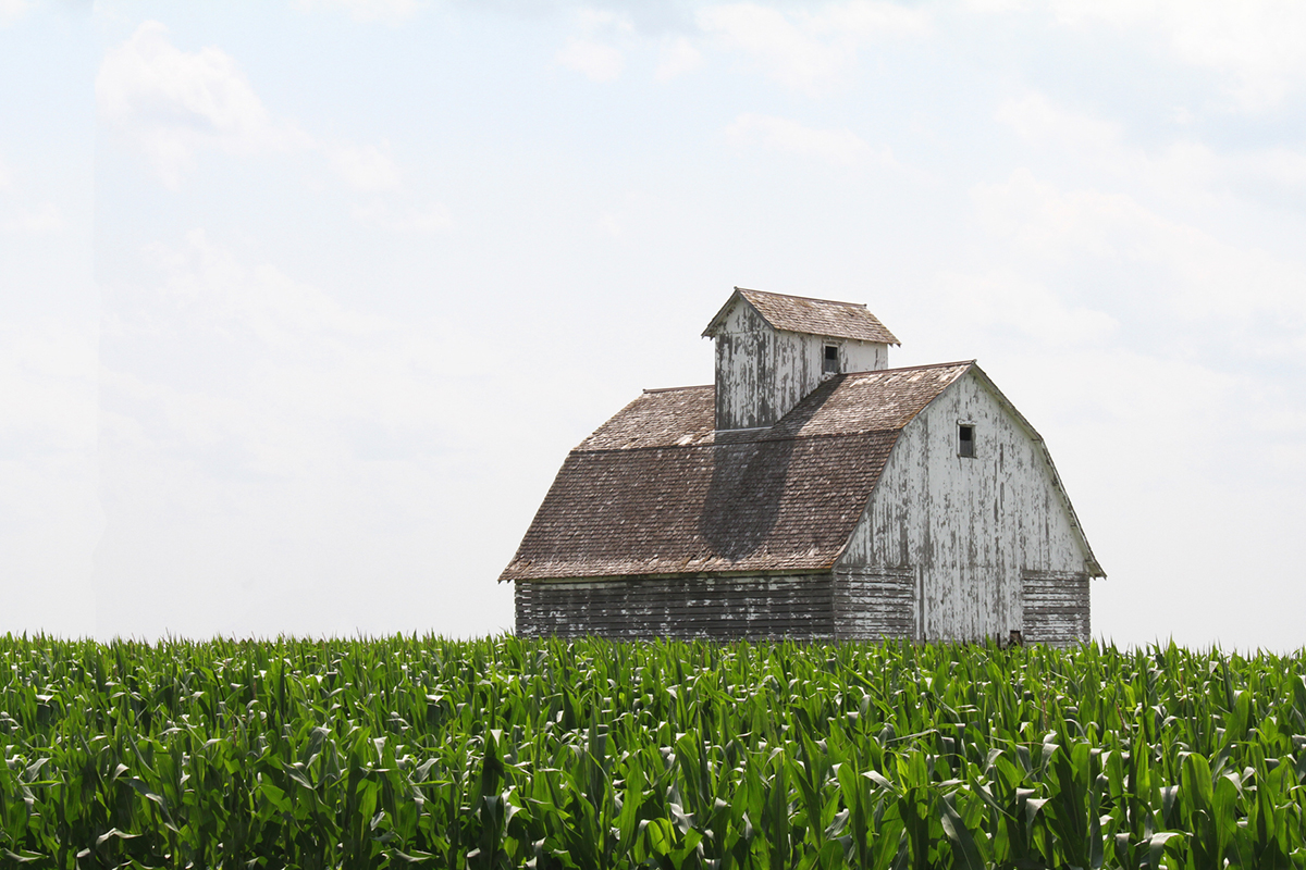 Barn Removal & Reclamation